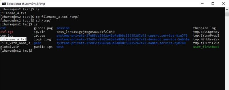 Linuxcpcommand.jpg